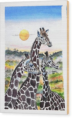 Three Giraffes    Sold Wood Print