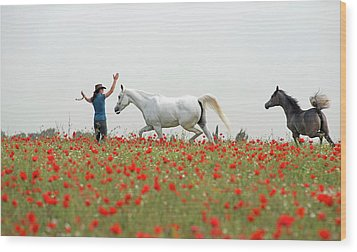 Three At The Poppies' Field Wood Print