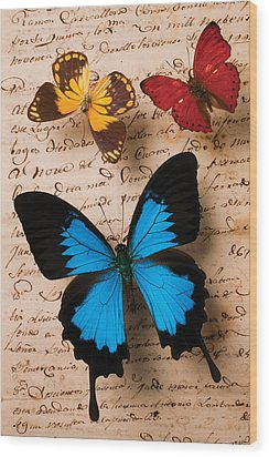 Three Butterflies Wood Print by Garry Gay