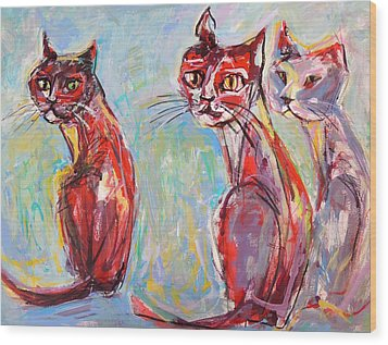 Three Cool Cats Wood Print by Mary Schiros