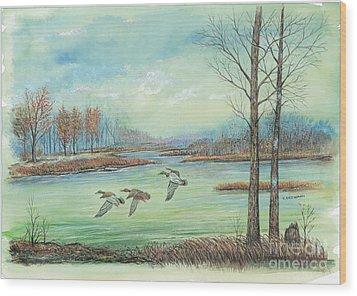 Three Ducks On A Blue Day Wood Print by Samuel Showman