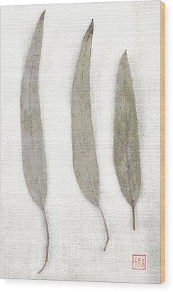 Three Eucalyptus Leaves Wood Print by Carol Leigh