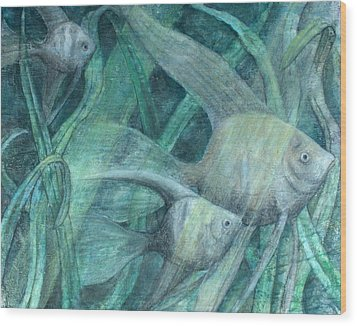 Three Fish Wood Print by Sandy Clift