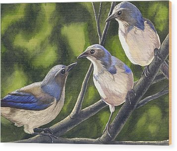 Three Jays Wood Print by Catherine G McElroy