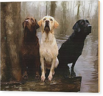 Three Labs Wood Print by Robert Smith