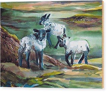 Three Lambs Wood Print by Mindy Newman