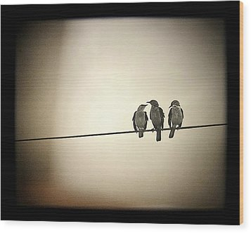 Three Little Birds Wood Print