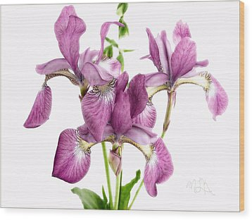 Three Mauve Japanese Irises Wood Print