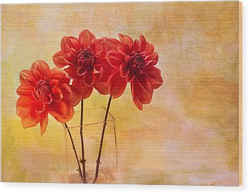 Three Orange Dahlias Wood Print by Rebecca Cozart