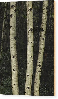 Wood Print featuring the photograph Three Pillars Of The Forest by James BO Insogna
