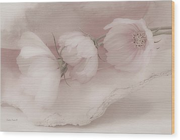 Three Pink Cosmo Flowers Wood Print by Sandra Foster