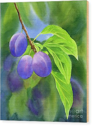 Three Purple Plums With Background Wood Print by Sharon Freeman