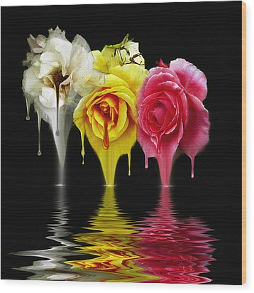 Tears Of Roses Wood Print by Gordon Engebretson