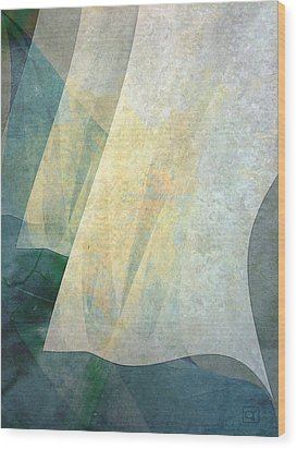 Wood Print featuring the digital art Three Sheets To The Wind by Jean Moore