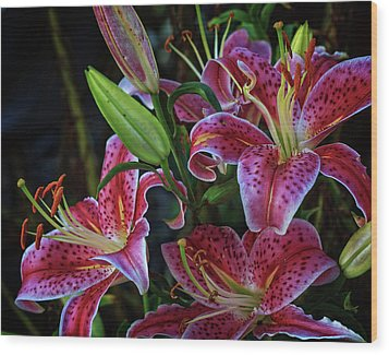 Wood Print featuring the photograph Three Stargazer Blooms by Robert Pilkington