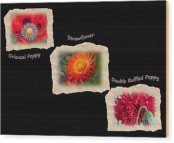 Three Tattered Tiles Of Red Flowers On Black Wood Print by Valerie Garner