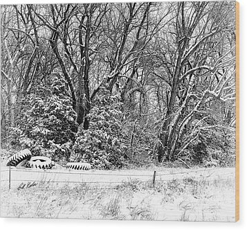 Wood Print featuring the photograph Three Tires And A Snowstorm by Bill Kesler