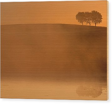 Three Trees  Wood Print by Don Spenner