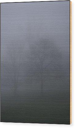 Three Trees In Fog Mount Dandenong Wood Print by Werner Hammerstingl