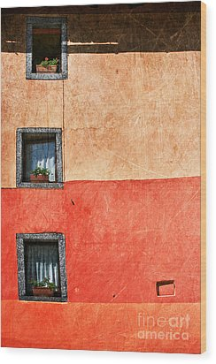 Three Vertical Windows Wood Print by Silvia Ganora