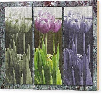 Threelips Wood Print