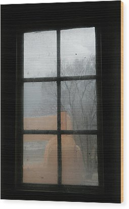 Wood Print featuring the photograph Through A Museum Window by Marilyn Hunt