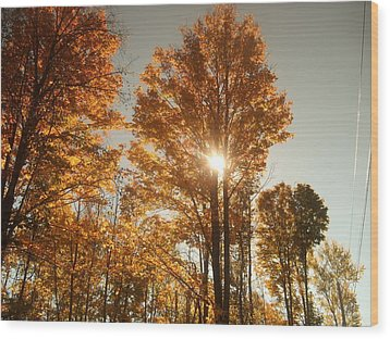 Through Sun Glasses Wood Print