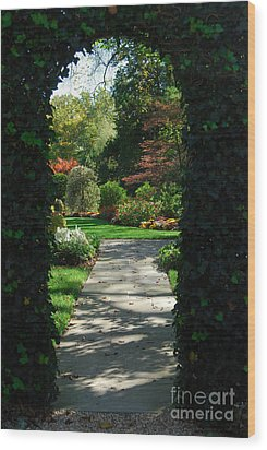 Through The Archway Wood Print