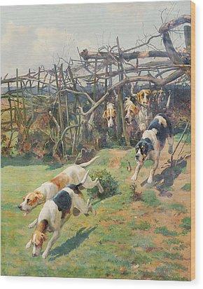 Through The Fence Wood Print by Arthur Charles Dodd