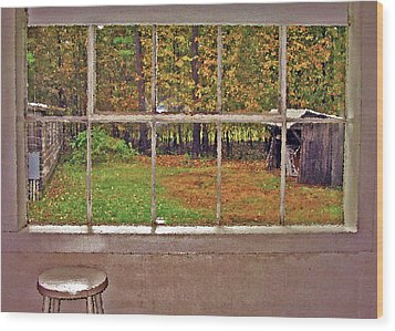 Through The Glass Wood Print by Steve Ohlsen