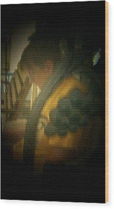 Through The Screen Door Wood Print by Lenore Senior