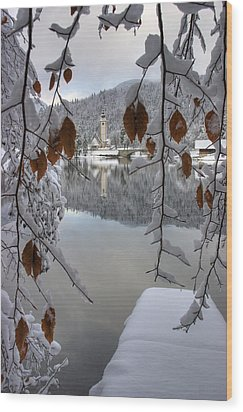 Wood Print featuring the photograph Through The Snow Trees by Ian Middleton