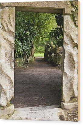 Through The Stone Wall Wood Print by Rae Tucker