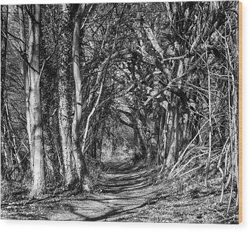 Through The Tunnel Bw 16x20 Wood Print