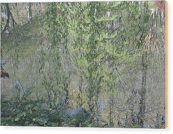 Through The Willows Wood Print by Linda Geiger