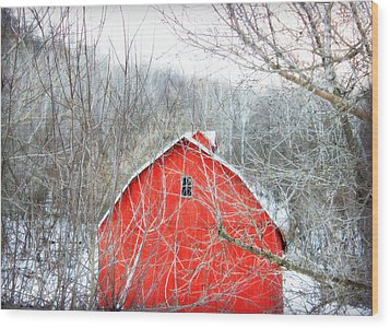 Through The Woods Wood Print by Julie Hamilton