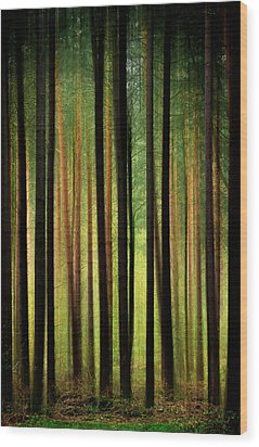 Through The Woods Wood Print by Svetlana Sewell