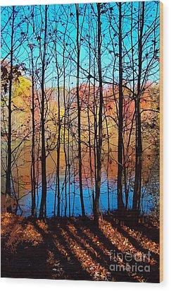 Thru Trees Wood Print by Andrew Kazmierski