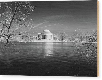 Tidal Basin Jefferson Memorial Wood Print