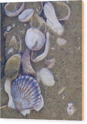 Tidal Pool - Brant Point - Nantucket Wood Print by Henry Krauzyk