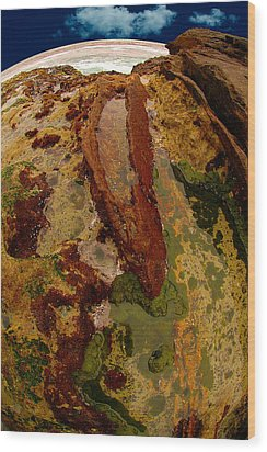 Tide Pool Wood Print by Harry Spitz