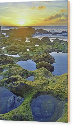 Wood Print featuring the photograph Tide Pools At Sunset by Tara Turner