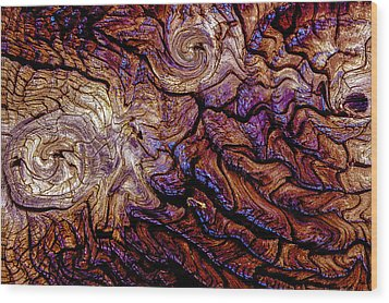 Tied Up In Knots Wood Print by Paul Wear