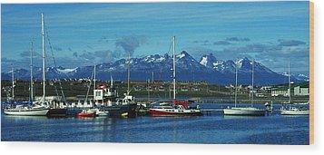 Tierra Del Fuego Wood Print by Juergen Weiss