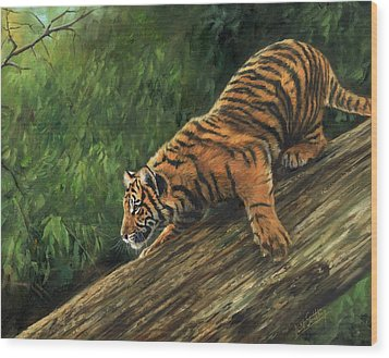 Wood Print featuring the painting Tiger Descending Tree by David Stribbling