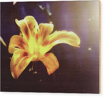 Tiger Lily On Waters Edge Wood Print by Bob Orsillo