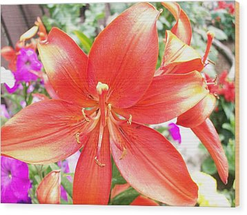 Wood Print featuring the photograph Tiger Lily by Sharon Duguay