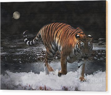 Wood Print featuring the photograph Tiger On The Run by Jacqi Elmslie
