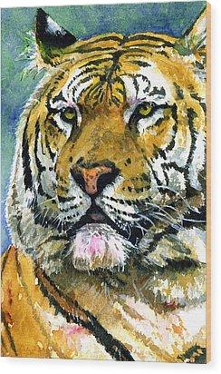 Tiger Portrait Wood Print by John D Benson