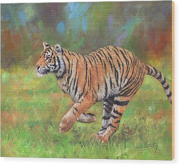 Wood Print featuring the painting Tiger Running by David Stribbling